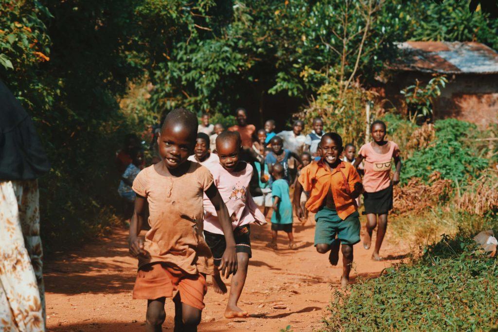 NATURALEZA AFRICA